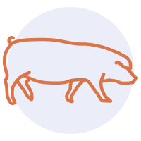 Gourmandise School - Cooking Meats - pork icon