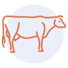 Gourmandise School - Cooking Meats - steak icon