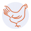 Gourmandise School - Cooking Meats - poultry icon